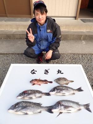 なぎ丸渡船の2020年1月3日(金)1枚目の写真