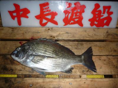 中長渡船の2020年1月11日(土)2枚目の写真