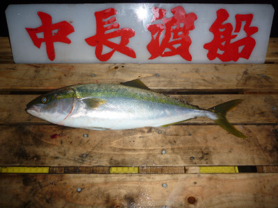 中長渡船の2020年1月11日(土)3枚目の写真