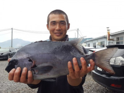 乙島丸の2019年12月31日(火)1枚目の写真