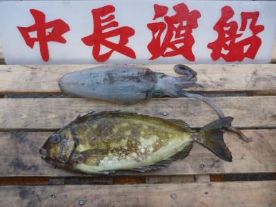 中長渡船の2020年1月19日(日)2枚目の写真