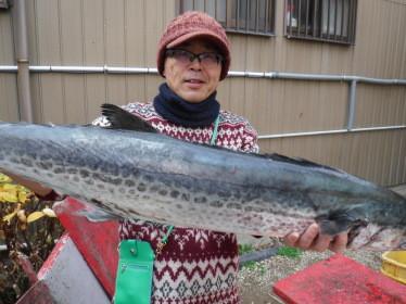 奥村釣船の2020年1月19日(日)1枚目の写真