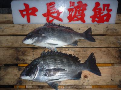 中長渡船の2020年1月22日(水)1枚目の写真