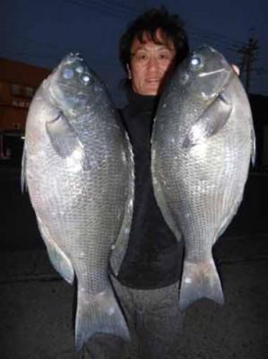 丸銀釣りセンターの2020年1月21日(火)4枚目の写真