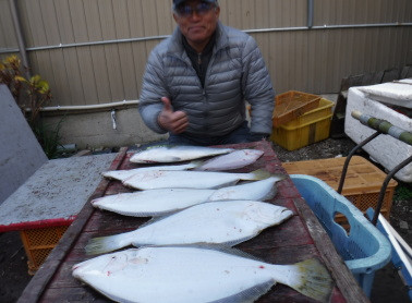 奥村釣船の2020年1月24日(金)5枚目の写真