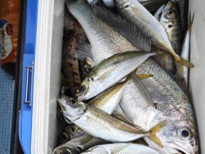 釣具の海友の2020年1月24日(金)4枚目の写真