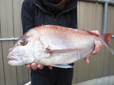 奥村釣船の2020年1月30日(木)5枚目の写真