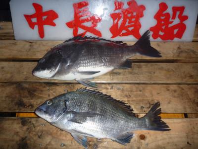 中長渡船の2020年1月30日(木)1枚目の写真