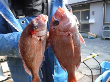 奥村釣船の2020年1月31日(金)5枚目の写真