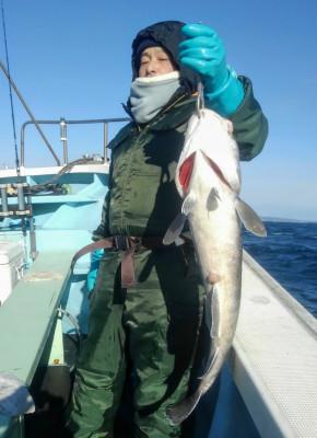 佐々木釣具店 平進丸の2020年2月9日(日)2枚目の写真