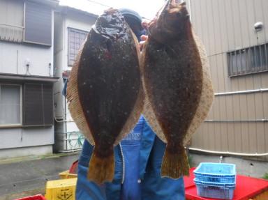 奥村釣船の2020年2月16日(日)3枚目の写真