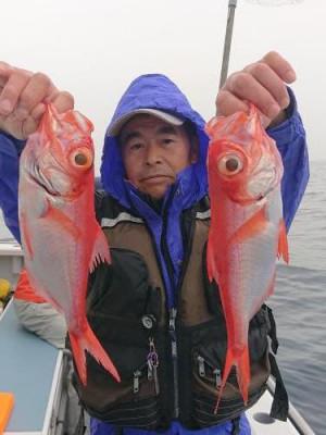 太郎丸の2020年2月16日(日)1枚目の写真