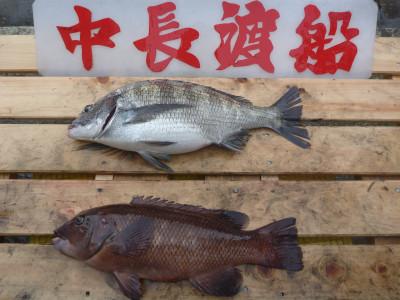 中長渡船の2020年3月13日(金)2枚目の写真