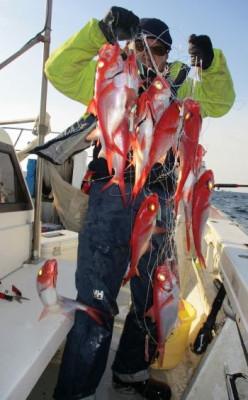 安芸のハマちゃん 浜田釣舟の2020年3月17日(火)1枚目の写真