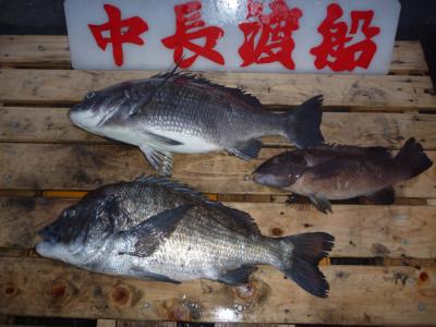 中長渡船の2020年3月18日(水)1枚目の写真