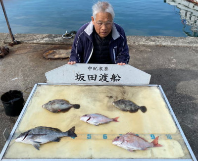 坂田渡船の2020年3月18日(水)1枚目の写真