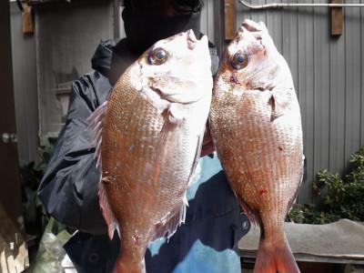 奥村釣船の2020年3月20日(金)1枚目の写真