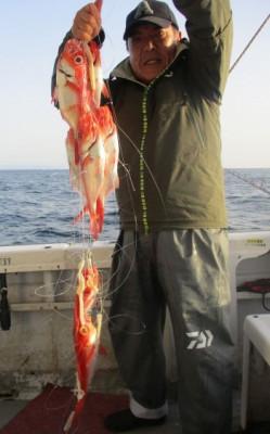 安芸のハマちゃん 浜田釣舟の2020年3月21日(土)2枚目の写真