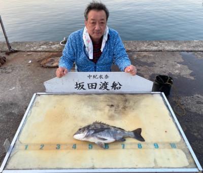 坂田渡船の2020年3月20日(金)2枚目の写真
