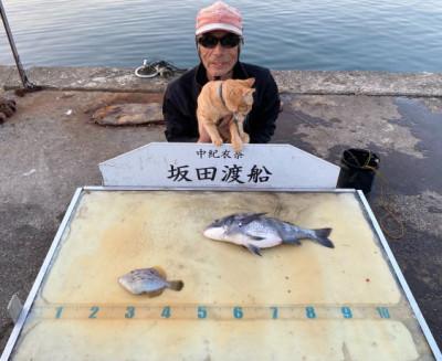 坂田渡船の2020年3月20日(金)3枚目の写真