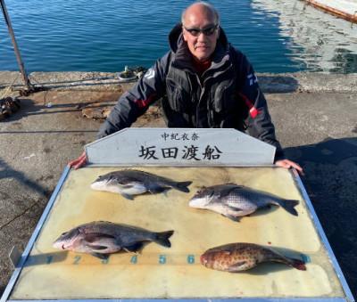 坂田渡船の2020年3月20日(金)4枚目の写真