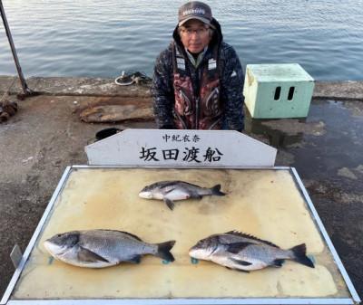 坂田渡船の2020年3月21日(土)1枚目の写真