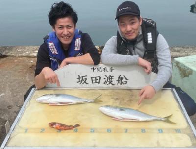 坂田渡船の2020年3月22日(日)2枚目の写真