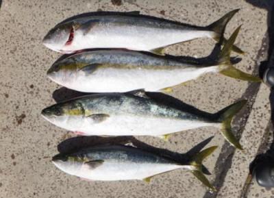 丸銀釣りセンターの2020年3月25日(水)5枚目の写真