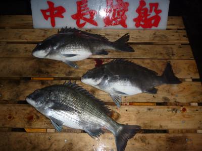 中長渡船の2020年3月26日(木)2枚目の写真