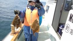 釣船 啓幸丸の2020年4月4日(土)4枚目の写真