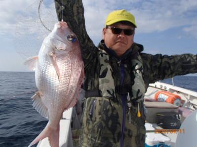 秀吉丸の2020年4月11日(土)1枚目の写真