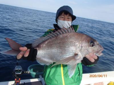 秀吉丸の2020年4月11日(土)2枚目の写真
