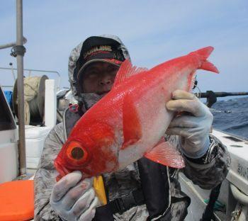 安芸のハマちゃん 浜田釣舟の2020年4月11日(土)4枚目の写真
