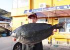 丸銀釣りセンターの2020年4月14日(火)2枚目の写真