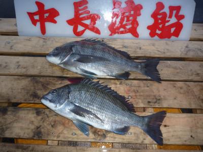 中長渡船の2020年4月24日(金)1枚目の写真