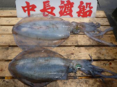 中長渡船の2020年5月22日(金)3枚目の写真