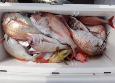 丸銀釣りセンターの2020年5月23日(土)4枚目の写真