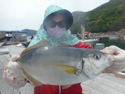 由良海つり公園&釣堀ランドの2020年5月30日(土)1枚目の写真