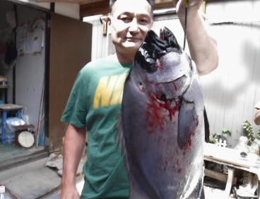 奥村釣船の2020年6月9日(火)4枚目の写真