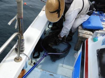 釣具の海友の2020年5月30日(土)2枚目の写真