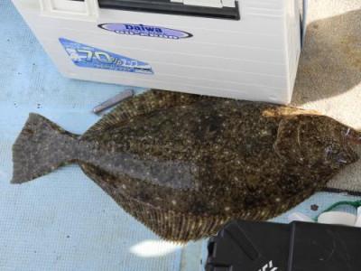 釣具の海友の2020年5月30日(土)5枚目の写真