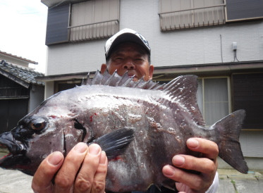 奥村釣船の2020年6月14日(日)1枚目の写真