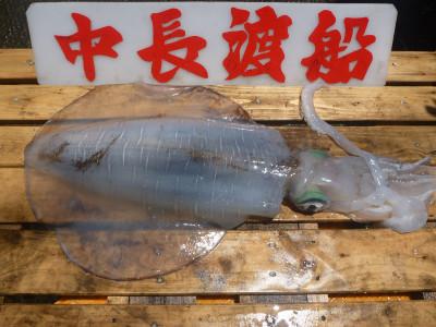 中長渡船の2020年6月16日(火)3枚目の写真
