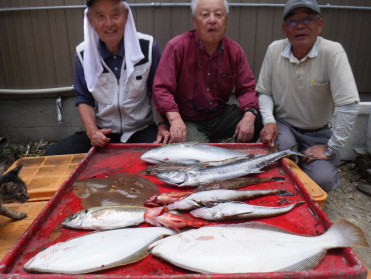 奥村釣船の2020年6月17日(水)3枚目の写真