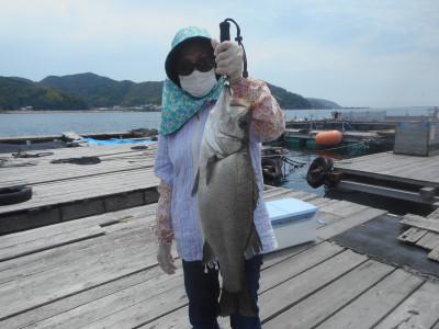 由良海つり公園&釣堀ランドの2020年6月21日(日)1枚目の写真