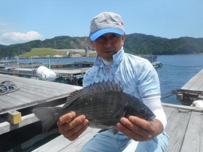 由良海つり公園&釣堀ランドの2020年6月22日(月)1枚目の写真