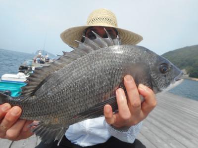 由良海つり公園&釣堀ランドの2020年6月27日(土)2枚目の写真