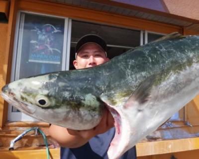 丸銀釣りセンターの2020年6月26日(金)2枚目の写真