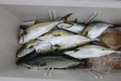 西岡遊漁の2020年6月25日(木)4枚目の写真