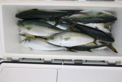 西岡遊漁の2020年6月25日(木)5枚目の写真
